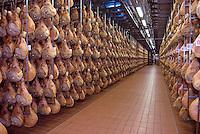 Langhirano,Parma, è conosciuta a livello mondiale per la produzione del Prosciutto di Parma. Numerose sono le aziende del settore. Tra le più note è la ditta Galloni che quest'anno festeggia i 50 anni di attività. .Nella galleria di stagionatura circa 150 mila coscie di maiale accompagnano il visitatore .. Mirella Galloni,  conduce l'attività insieme ai fratelli..Nella fabbrica Galloni troviamo parecchi lavoratori stranieri, che nel corso del tempo hanno raggiunto incarichi di fiducia..Langhirano, Italy, near Parma, is the main center of production of the famous Prosicutto di Parma, Parma ham. The Galloni factory is one of the most important, in 50  years of activity..