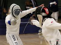 Fencing 2019