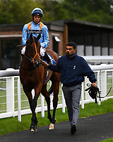 Winner of The M J Church British EBF Novice Stakes (Plus 10) (Div 1),Mover Over ridden by Sean Levey and trained by Richard Hannon is led into the winners enclosure  during Afternoon Racing at Salisbury Racecourse on 7th August 2017