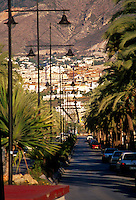 An avenue of palm trees. Benalmádena ,Costa del Sol, Andalucia,Spain