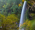 Silver Falls State Park, OR:  North Falls (136 ft) in Silver Creek Canyon in fall
