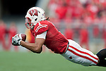 October 31, 2009: Wisconsin Badgers wide receiver Nick Toon (1) makes a diving catch during an NCAA football game against the Purdue Boilermakers at Camp Randall Stadium on October 31, 2009 in Madison, Wisconsin. The Badgers won 37-0. (Photo by David Stluka)