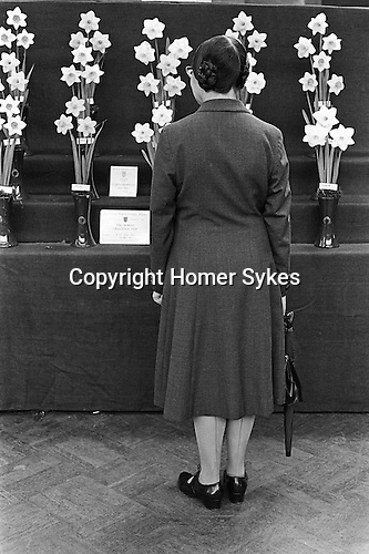 VICTORIA, LONDON, ENGLAND - 1968: At the Royal Horticultural Society flower and vegetables show a middle aged woman with an umbrella contemplates the prize-winning daffodils.