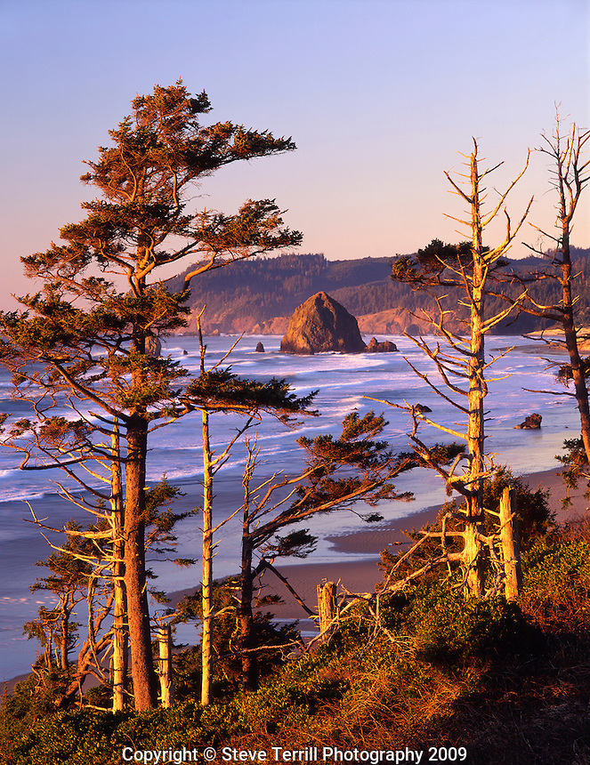 Evening light on Haystack Rock at Cannon Beach viewed from Inspiration Point in Clatsop County, Oregon