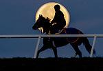 12-12-19 Cold Moon Moonset Fair Hill