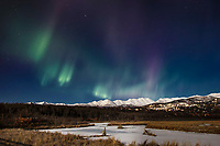 winter landscape shows Northern Lights (Aurora Borealis) in sky above moonlight on the Chugach Mountains and hillside homes in Anchorage Alaska at Potter's Marsh   January 2014