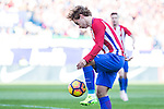 Antoine Griezmann of Atletico de Madrid of Atletico de Madrid during the match of Spanish La Liga between Atletico de Madrid and Futbol Club Barcelona at Vicente Calderon Stadium in Madrid, Spain. February 26, 2017. (Rodrigo Jimenez / ALTERPHOTOS)
