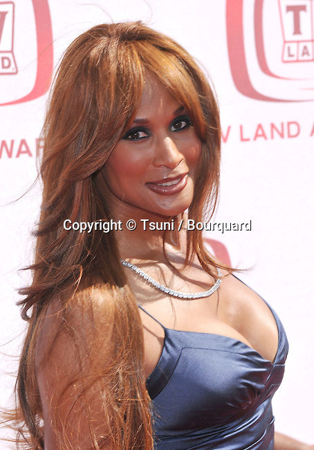 Beverly Johnson  - <br /> 6th TV Land Awards 2008 at the Barker Hangar  in Los Angeles.<br /> <br /> headshot<br /> eye contact<br /> long red hair<br /> smile