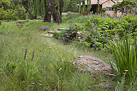 Meadow garden built around landscape features, swale, trees, and rocks using mixed sedges Carex remota and divulsa; John Greenlee design
