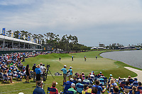 Shane Lowry (IRL) lines up his putt in front of a very large Saturday afternoon gallery on 18 during round 3 of The Players Championship, TPC Sawgrass, at Ponte Vedra, Florida, USA. 5/12/2018.<br /> Picture: Golffile | Ken Murray<br /> <br /> <br /> All photo usage must carry mandatory copyright credit (&copy; Golffile | Ken Murray)