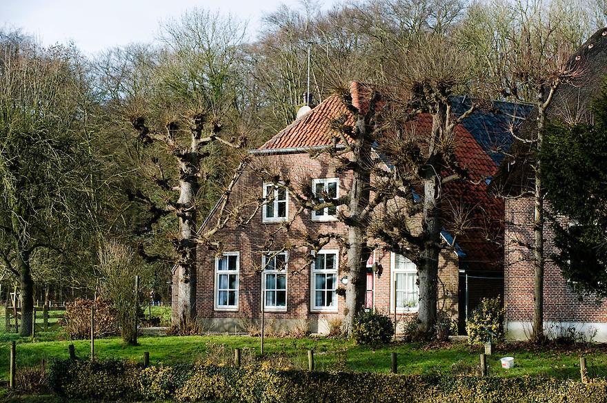 Nederland, Bunnik, 25 jan 2009.Mooi landhuis met leibomen op landgoed Amelisweerd.Foto (c) Michiel Wijnbergh