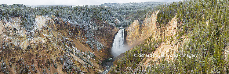 67545-09107 Lower Falls in fall, Yellowstone National Park, WY