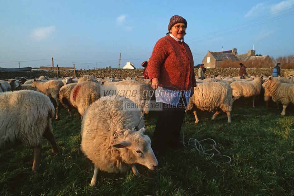 Europe/France/Bretagne/29/Finistère/Ile d'Ouessant: Fête des moutons - bergère avec ses moutons [Non destiné à un usage publicitaire - Not intended for an advertising use]