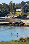 Paddle-boarders at Pebble Beach