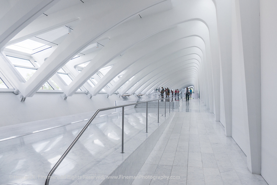 Musings On Callatrava Design 6, Milwaukee Art Museum