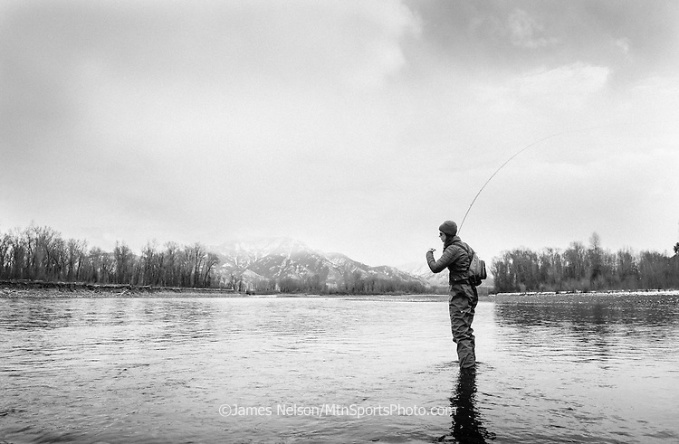 Alexis Metacalf fly fishes for trout during a winter day on the South Fork of the Snake River, Idaho.