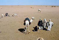 Tuareg (Touareg) men with camel in Sahara desert, In Abangarit, Niger Republic, Africa.