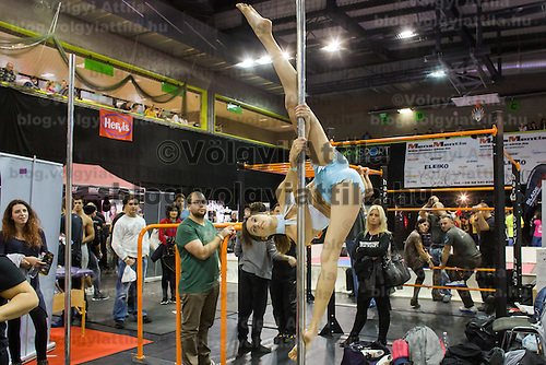 Participant practices pole dance at the FitParade mass sports event in Budapest, Hungary on October 17, 2015. ATTILA VOLGYI
