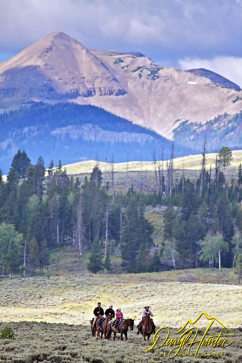 Horseback riding, trail ride, Yellowstone National Park