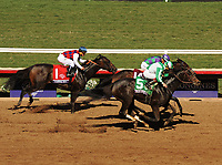 DEL MAR, CA - NOVEMBER 04: Bar of Gold  #5, ridden by Irad Ortiz Jr., wins the Breeders' Cup Filly & Mare Sprint  on Day 2 of the 2017 Breeders' Cup World Championships at Del Mar Racing Club on November 4, 2017 in Del Mar, California. (Photo by Carson Denis/Eclipse Sportswire/Breeders Cup)