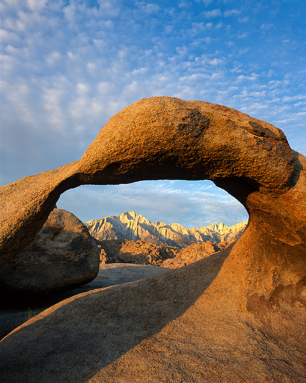 "Mobius Arch, Lone Pine Peak and Mt. Whitney at sunrise. Alabama Hills Recreation Area (protected habitat), managed by the BLM, a ""range of hills"" and rock formations near the eastern slope of the Sierra Nevada Mountains in the Owens Valley. Orange, drab weathered metamorphosed volcanic rock that is 150-200 million years old and 90 million year old granite that weathers to potato-shaped large boulders, many of which stand on end due to spheroidal weathering acting on many vertical joints in the rock. Named by Confederate sympathizers after CSS Alabama sunk off coast of Normandy by USS Kearsarge in 1864. Popular location for hundreds of westerns and other films. Inyo County, CA."