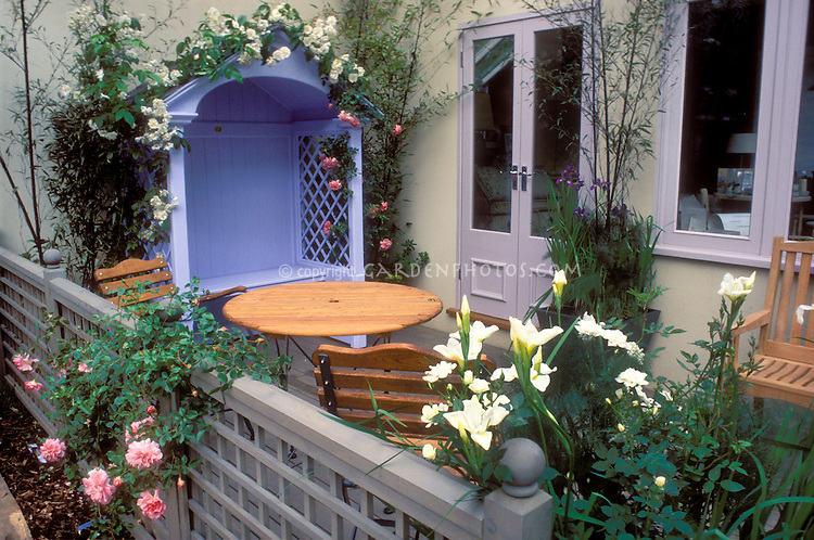 Outdoor room: House courtyard side landscaping, containers pots garden of climbing roses, bamboo, iris on deck with blue gazebo seat. Lilies Lilium, fence, color theme of white, pink, lavender trim on windows and doors, patio furniture table and chairs, side entrance