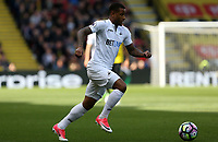 Saturday April 15 2017 <br /> Pictured: Luciano Narsingh of Swansea City<br /> Re: Premier League match between Watsford and Swansea City at Vicarage Road on April 15, 2017 in Swansea, Wales.
