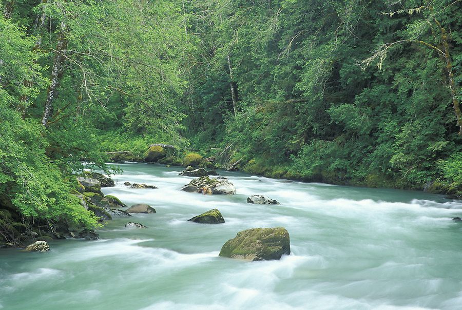 Sauk River, Mountain Loop Highway, Darrington, Washington