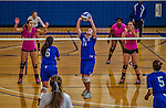27 October 2013: Yeshiva University Maccabee Setter Emily Rohan, a Sophomore from Dallas, Texas, in action against the College of Mount Saint Vincent Dolphins at the College of Mount Saint Vincent in Riverdale, NY. The Dolphins defeated the Maccabees 3-0 in NCAA women's volleyball play. Mandatory Credit: Ed Wolfstein Photo *** RAW (NEF) Image File Available ***
