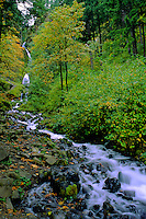 Wahkeena Stream in Columbia River Gorge National Scenic Area, Oregon, US.