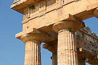 Close up of the ancient Doric Greek capitals & columns of the  Temple of Hera of Paestum built in about 460-450 BC. Paestrum archaeological site, Italy.