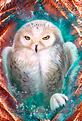 Sandi, REALISTIC ANIMALS, REALISTISCHE TIERE, ANIMALES REALISTICOS, paintings+++++coppersnowyowl(1),USSN29,#a#, EVERYDAY,owl ,puzzles