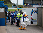 What the duck is going on here. Peterhead welcomes Rangers to division 3