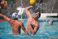 Cal Waterpolo M