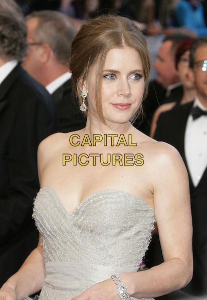 Amy Adams.85th Annual Academy Awards held at the Dolby Theatre at Hollywood & Highland Center, Hollywood, California, USA..February 24th, 2013.oscars half length powdery blue grey gray ruffle frills strapless  .CAP/ADM.©AdMedia/Capital Pictures.