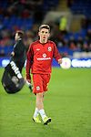 Wrexham born Harry Wilson who is Wales youngest football international. At 16 years and 207 days, the Liverpool midfielder was 108 days younger than previous record holder Gareth Bale.  He is pictured before the start of the Macedonia game last Friday when he was an unused substitute.