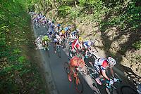 peloton up the Hagaard hill <br /> <br /> Brabantse Pijl 2014