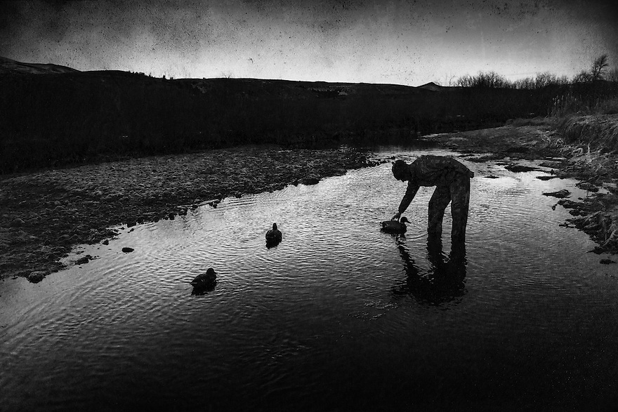 A waterfowl hunter sets decoys as dawn breaks on the Beaverhead River near Dillon, Montana.