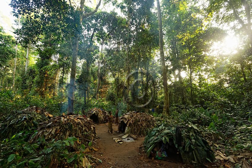 """Surrounded by """"Libolis"""" trees, the camp of Massila groups together 5 huts. The huts are covered in Marantaceae leaves. The opening of forest roads in the last twenty-five years has profoundly changed the N'Bensele's way of life. Their relation with the Bantu masters has been modified; clothing and distilled alcohol has arrived in the camps and the villages.///Entouré d'arbres «Libolis» le campement de Massila regroupe 5 huttes. Les huttes sont recouvertes de feuille de Marantaceae. L'ouverture des routes forestières les vingt-cinq dernières années a profondément changé le mode de vie des N'Bensélé. Leur relation avec les maîtres Bantous a été modifiée, les vêtements, l'alcool distillé est arrivé dans les campements et les villages."""