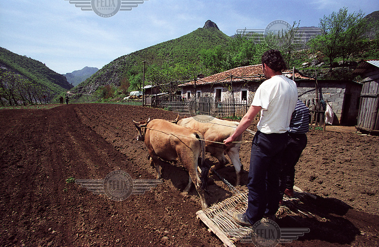 Brothers Murat Lumaj and Rasim Lumaj plough the land by hand. The village is 30k north of the city of Shkoder and is accessible only along very basic roads.