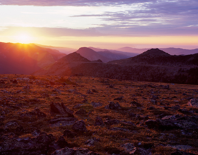 alpine tundra, Trail Ridge, sunrise, Rocky Mountain National Park, Colorado
