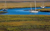 Sail boats in Amelia Island, FL