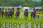 Her Majesty the Queen horse Four Winds (Purple, scarlett sleeves and black cap) is beaten by Aidan O'Brien horse Poet (Purple and white, purple cap) in the Vincent O'Brien Ruby stakes at the Killarney Races on Tuesday
