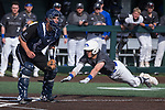 Hofstra vs Nevada Baseball Saturday
