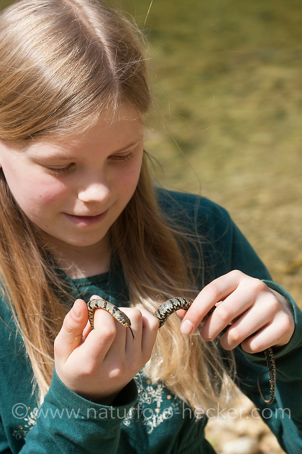 Kind, Mädchen mit Sizillianische Ringelnatter, Süditalienische Ringelnatter, Natrix natrix sicula, Natrix natrix ssp. sicula, Sicilian Grass Snake. Sizilien, Italien, Sicily, Italy