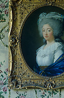 A gilt-framed portrait of the Comtesse de Provence hangs against a hand-painted wall of her former boudoir