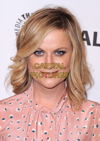 HOLLYWOOD, CA - MARCH 18:  Amy Poehler at PaleyFest 2014 - &quot;Parks &amp; Recreation&quot; at the Dolby Theatre on March 18, 2014 in Hollywood, California. <br /> CAP/MPI/PGKirkland<br /> &copy;PGKirkland/MediaPunch/Capital Pictures