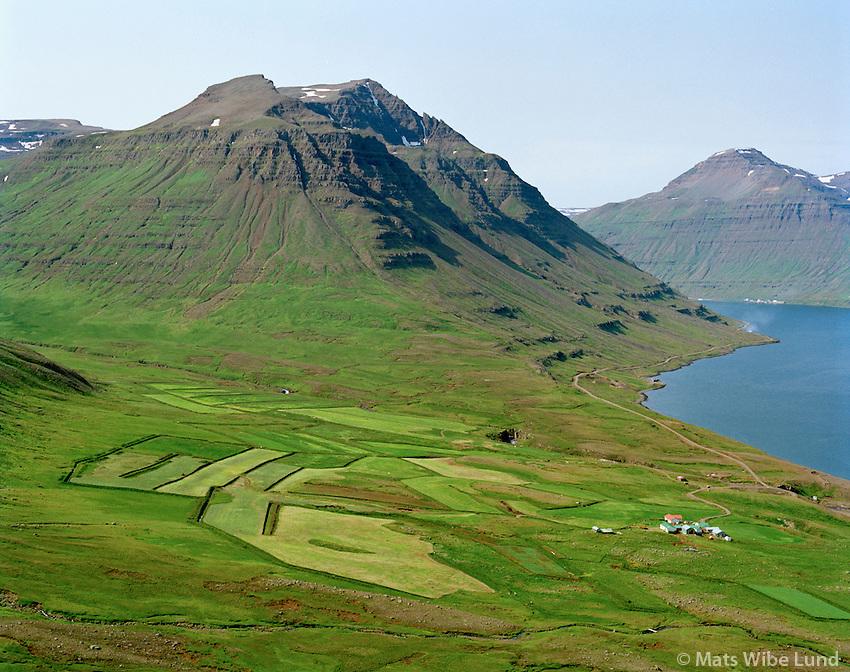 Hánefsstaðir séð til vesturs, Seyðisfjörður áður Seyðisfjarðarhreppur / Hanefsstadir viewing west, Seydisfjordur former Seydisfjardarhreppur.