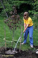 TT19-053z  Girl watering planted tree - (TT19-004e,047z,048z,050z,051z,053z,056z,059z)