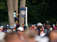 A fan watches the action on the 15th tee during the 100th PGA Championship at Bellerive Country Club, St. Louis, Missouri.<br /> Picture Tom Russo / Golffile.ie<br /> <br /> All photo usage must carry mandatory copyright credit (© Golffile | Tom Russo)